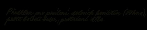 Předklon pro posílení dolních končetin (stehna), proti bolesti beder, protažení těla
